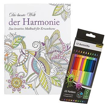 Idena 68146 - Malbuch für Erwachsene, Motiv Harmonie, inklusive 12 ...