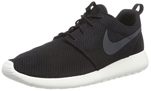 Nike Herren Roshe One Low Top
