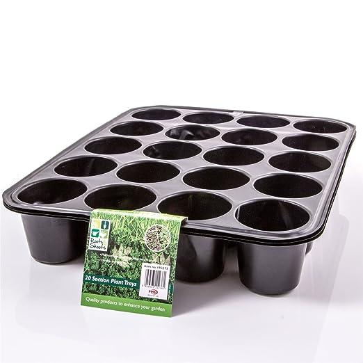 6 x Seed bandejas - 20 Cell plantas/flores - bandeja de ...