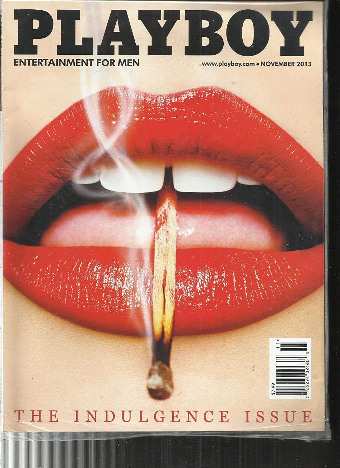 PLAYBOY MAGAZINE, ENTERTAINMENT FOR MEN THE INDULGENCE ISSUE NOVEMBER, 2013 s3457