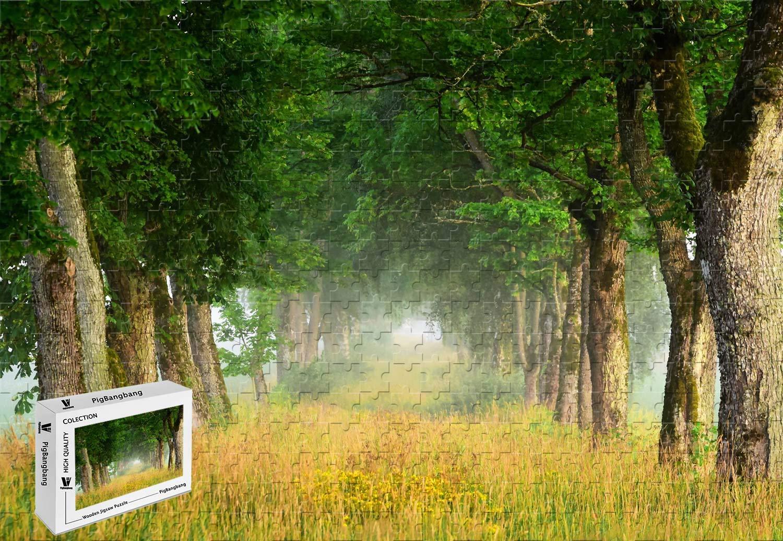 激安単価で PigBangbang,20.6 X 15.1インチ 木製 - - 夏の自然の風景木 X 草の霧 15.1インチ 夜明け - 300ピース ジグソーパズル B07HYB1TTS, ジェッカーズ:657642f1 --- sinefi.org.br