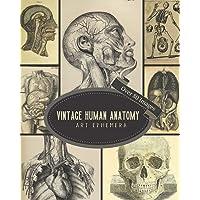 Vintage Human Anatomy Art Ephemera: For Junk Journals, Scrapbooking, Decoupage, Collages, Card Making & Mixed Media : 80…