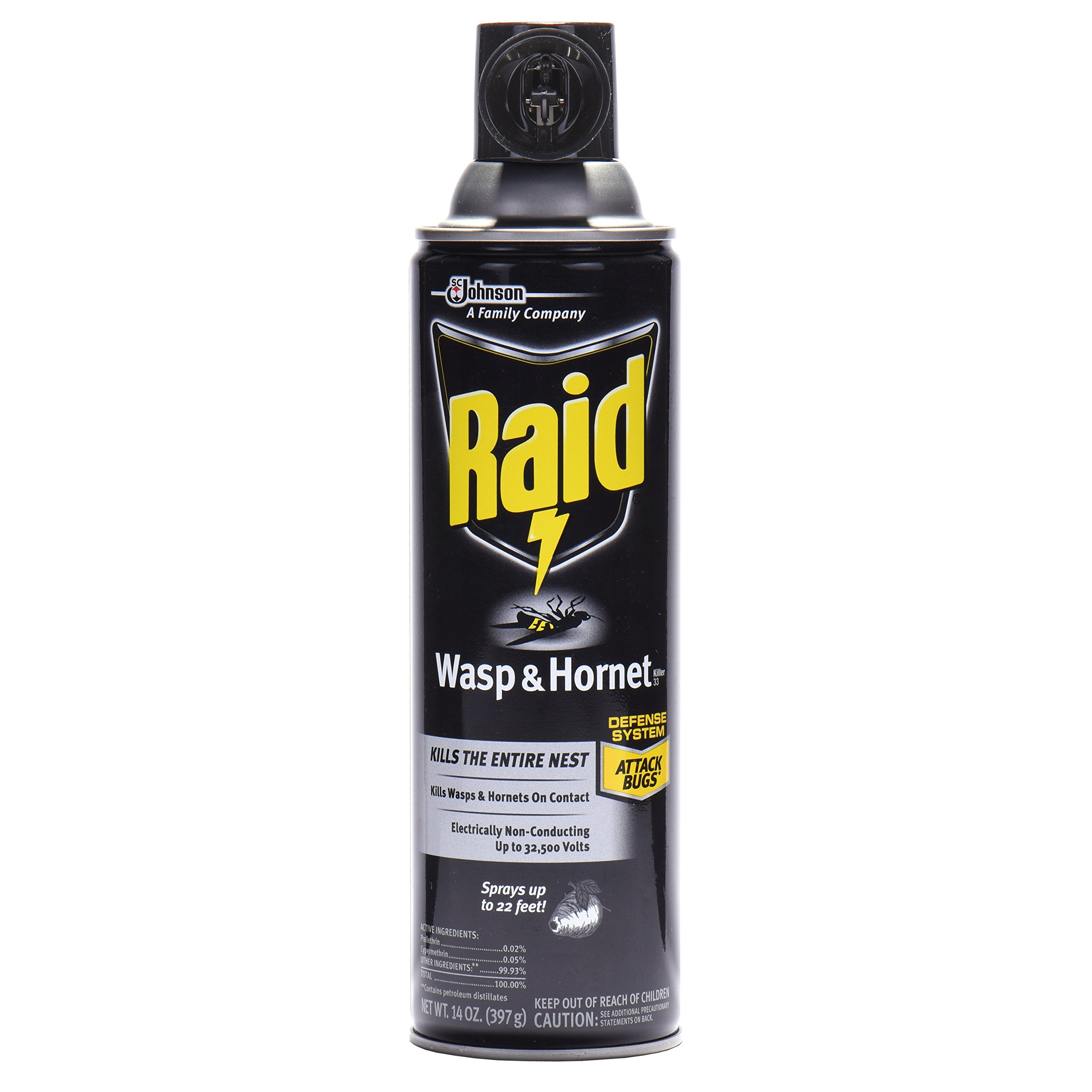 Raid Wasp and Hornet Killer Spray, Kills the entire nest, Kills Paper Wasps, Yellow Jackets, Mud Daubers and more, 14 Oz