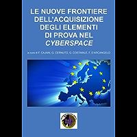 Le nuove frontiere dell'acquisizione degli elementi di prova nel cyberspace