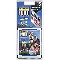 Panini-17 Pochettes, Foot Championnat de France Stickers 2018-2019, 2428-020