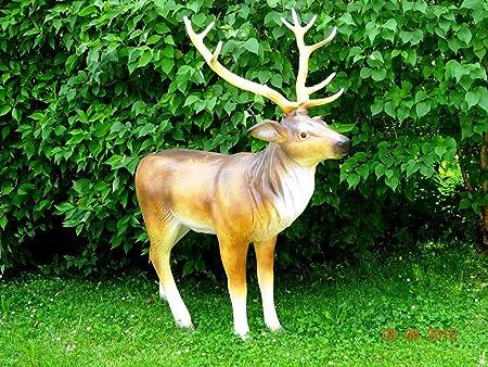 GR. HIRSCH XXL~de tamaño natural 160cm~Wild~corzo en vida tamaño ciervo jardín decoraciones de jardín decorativo DELUXE~~WOW!: Amazon.es: Hogar