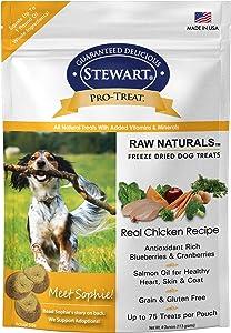Stewart Raw Naturals Freeze Dried Turkey Recipe Dog Treats, Grain Free