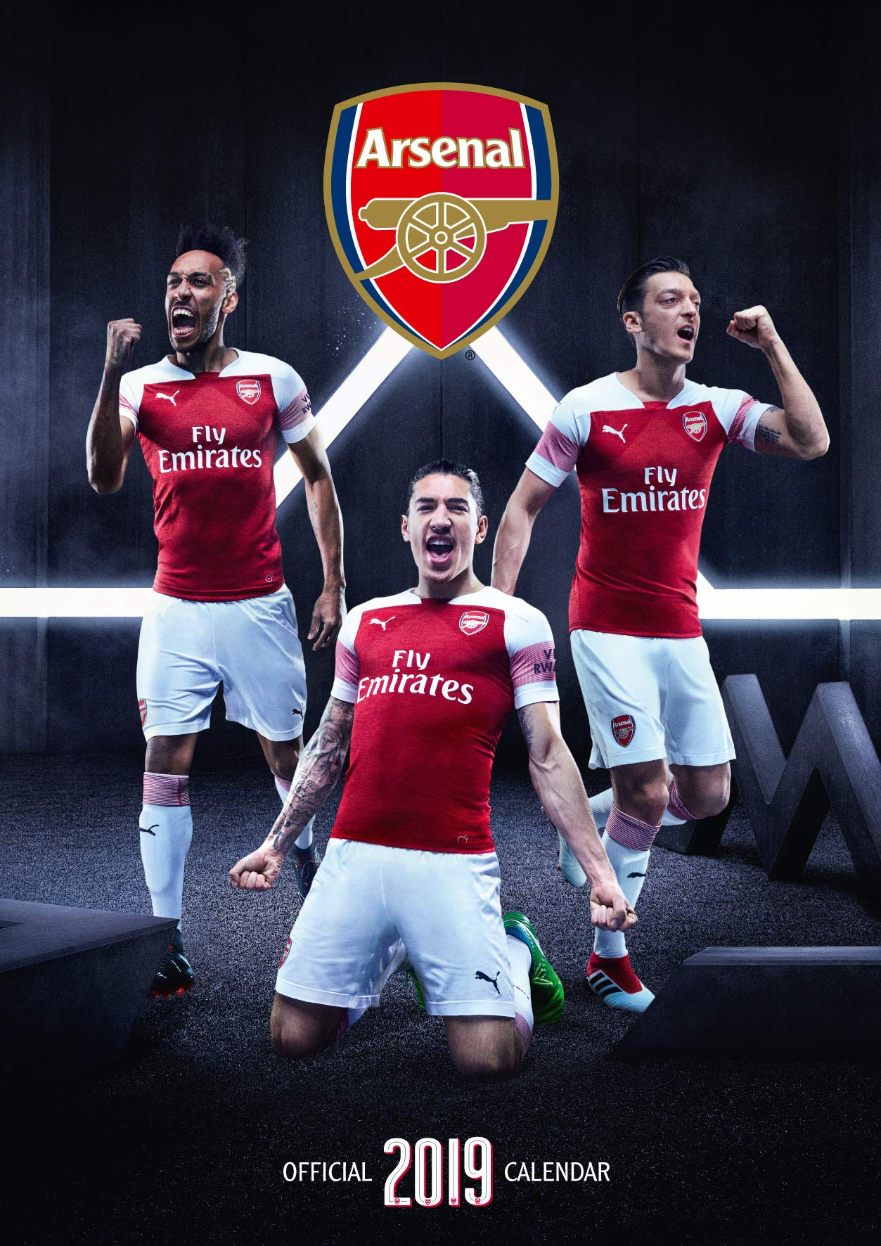 e663ec5a7 The Official Arsenal F.C. Calendar 2019  Arsenal F.C.  9781785497858 ...