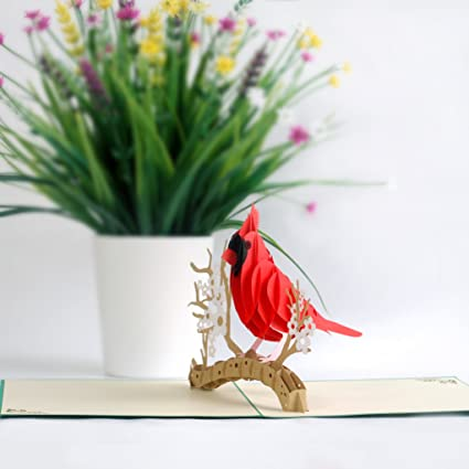 3D Popup Card of Cardinal Bird, Paper Art & Handicrafts, Greeting Cards, Handmade Gifts