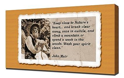 Amazon John Muir Quotes 2 Canvas Art Print Posters Prints