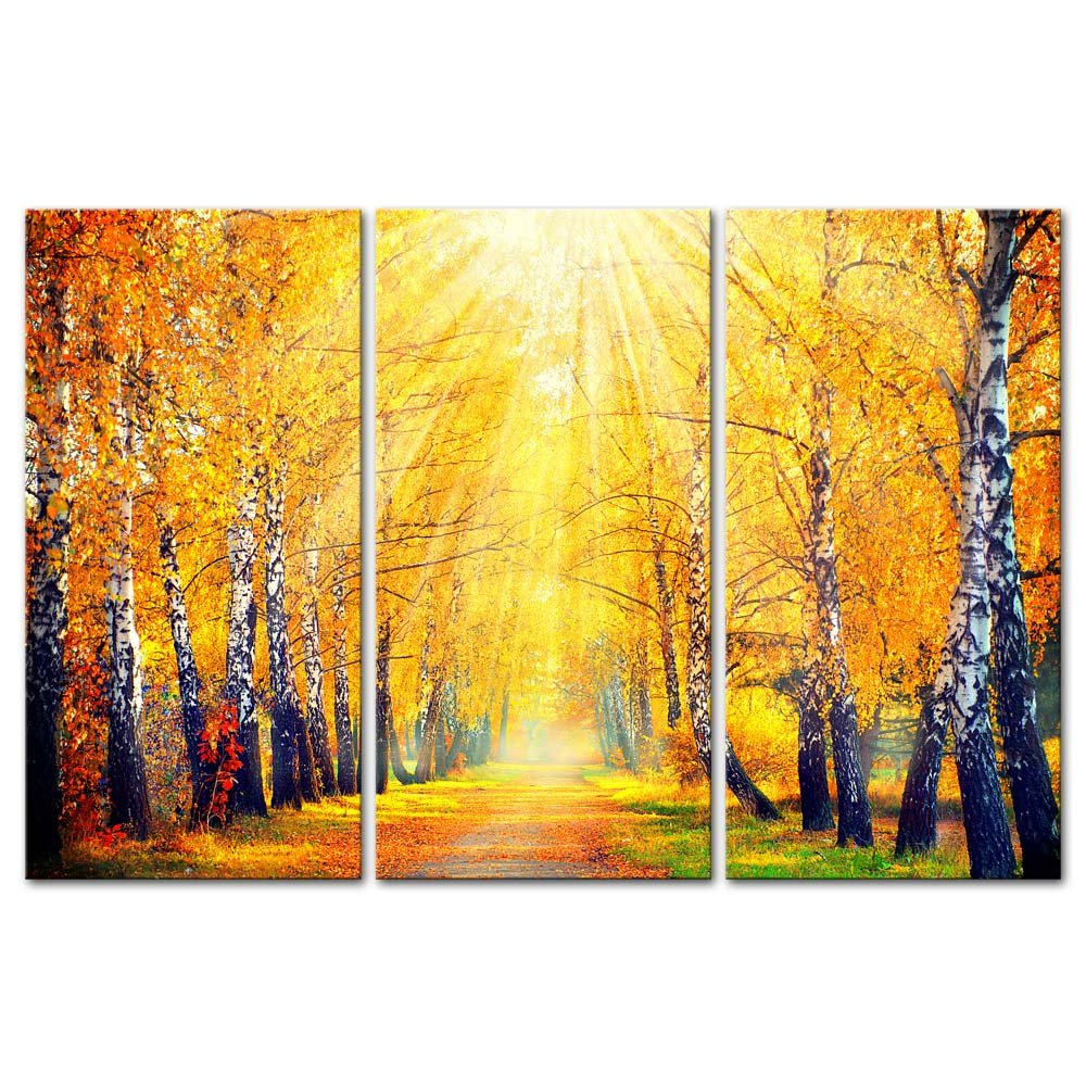 Amazon.com: 3 Pieces Modern Canvas Painting Wall Art The Picture ...