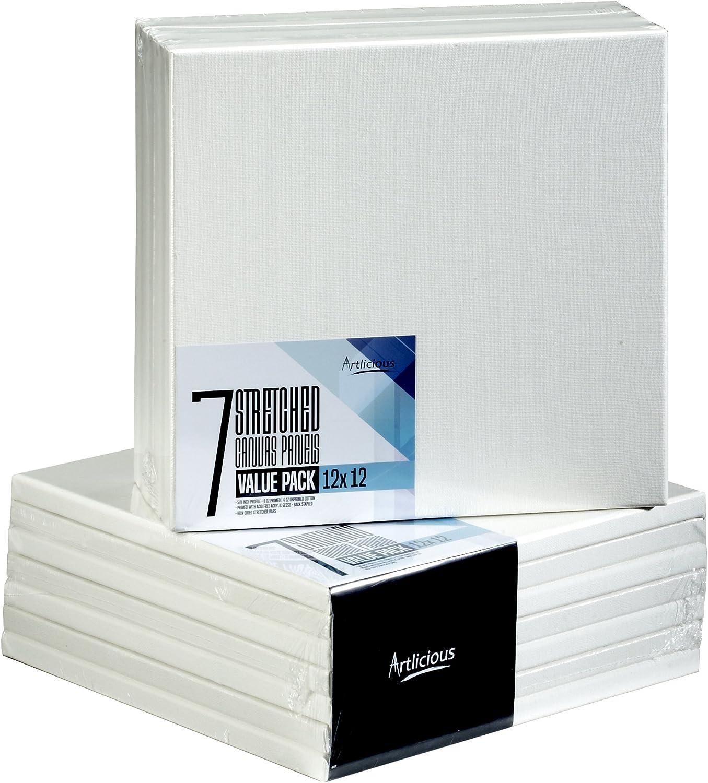 Artlicious 48 Mini 2x2 Stretched Canvas