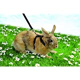 Niteangel Adjustable Harness with Lead, Suitable for Most Rabbits