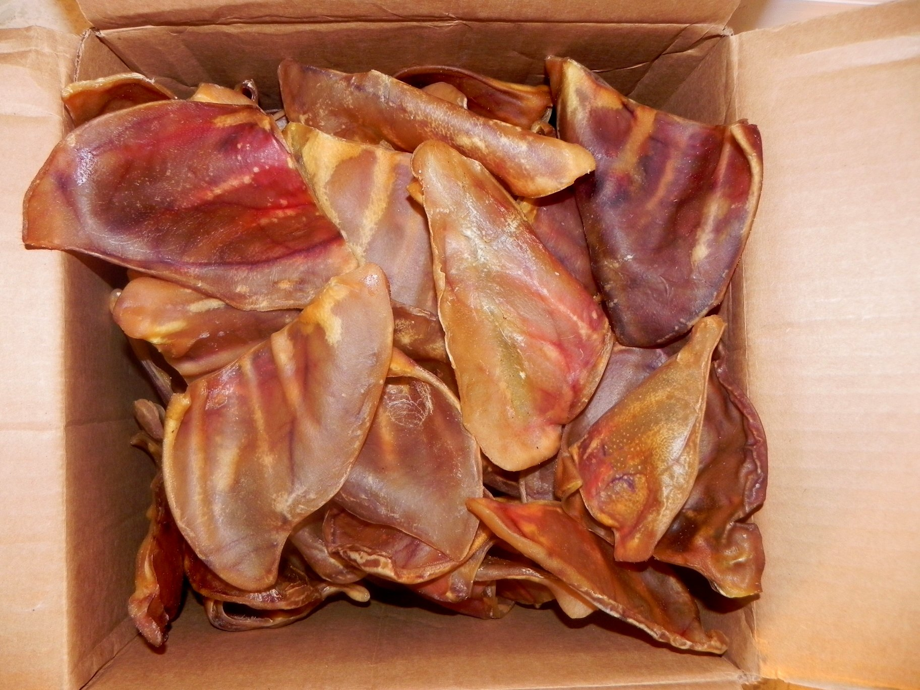 123 Treats Pig Ears for Dogs   Quality Pork Dog Chews 100% Natural Pork Ears Full of Protein for Your Pet (Brazil, 30 Count) by 123 Treats (Image #2)