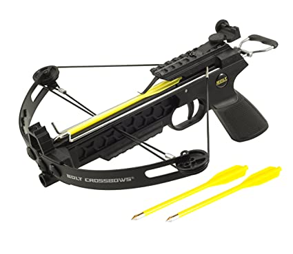 Image result for Crossbow