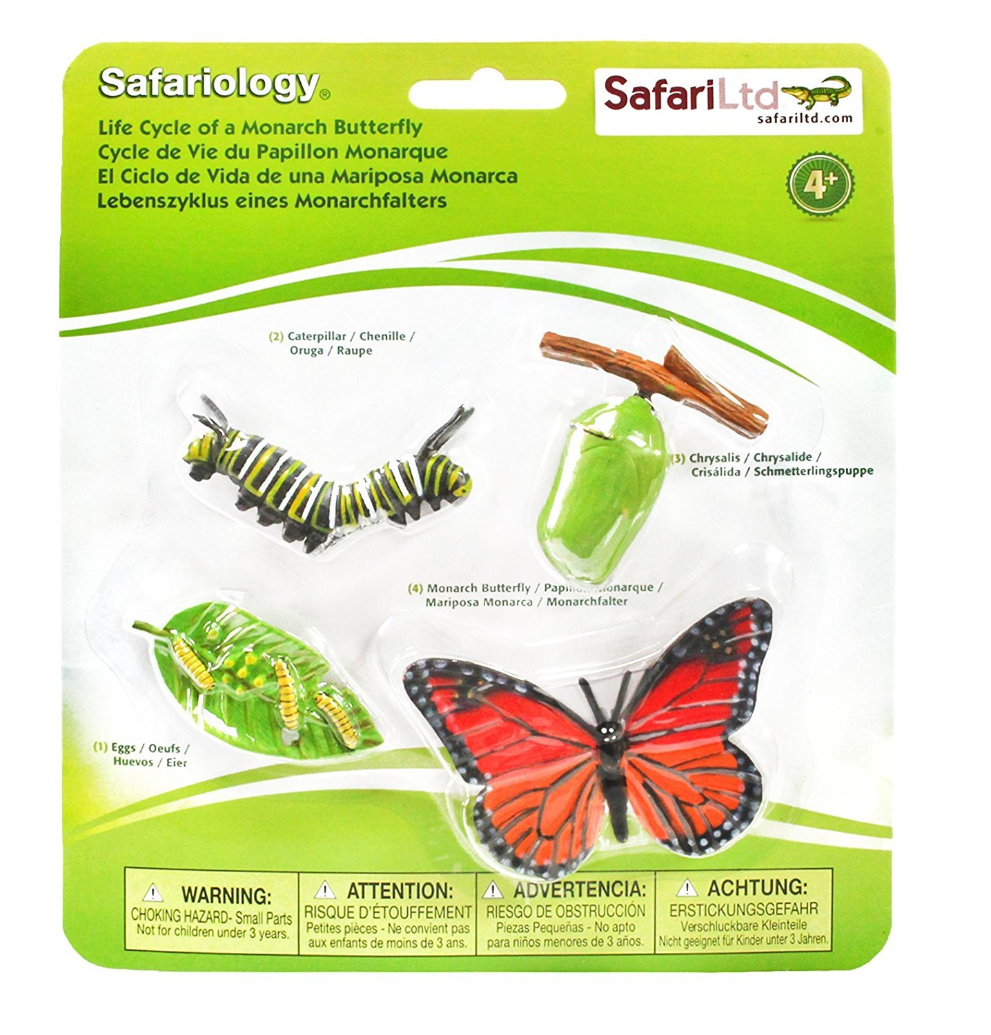 Amazon.com: Pack of 2 Safari Ltd Life Cycle of a Monarch Butterfly ...