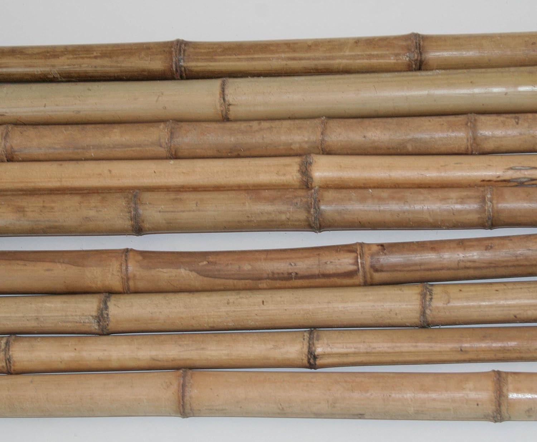 Bambusrohr Moso 240cm Natur Gelbbraun Durch 5 Bis 6cm