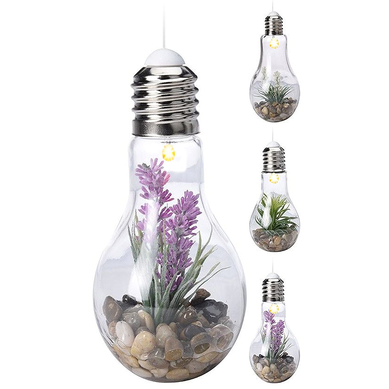 Large LED Decorative Light Bulb Glass Terrarium Jar Vase Table Lamp Deco Plant H & S
