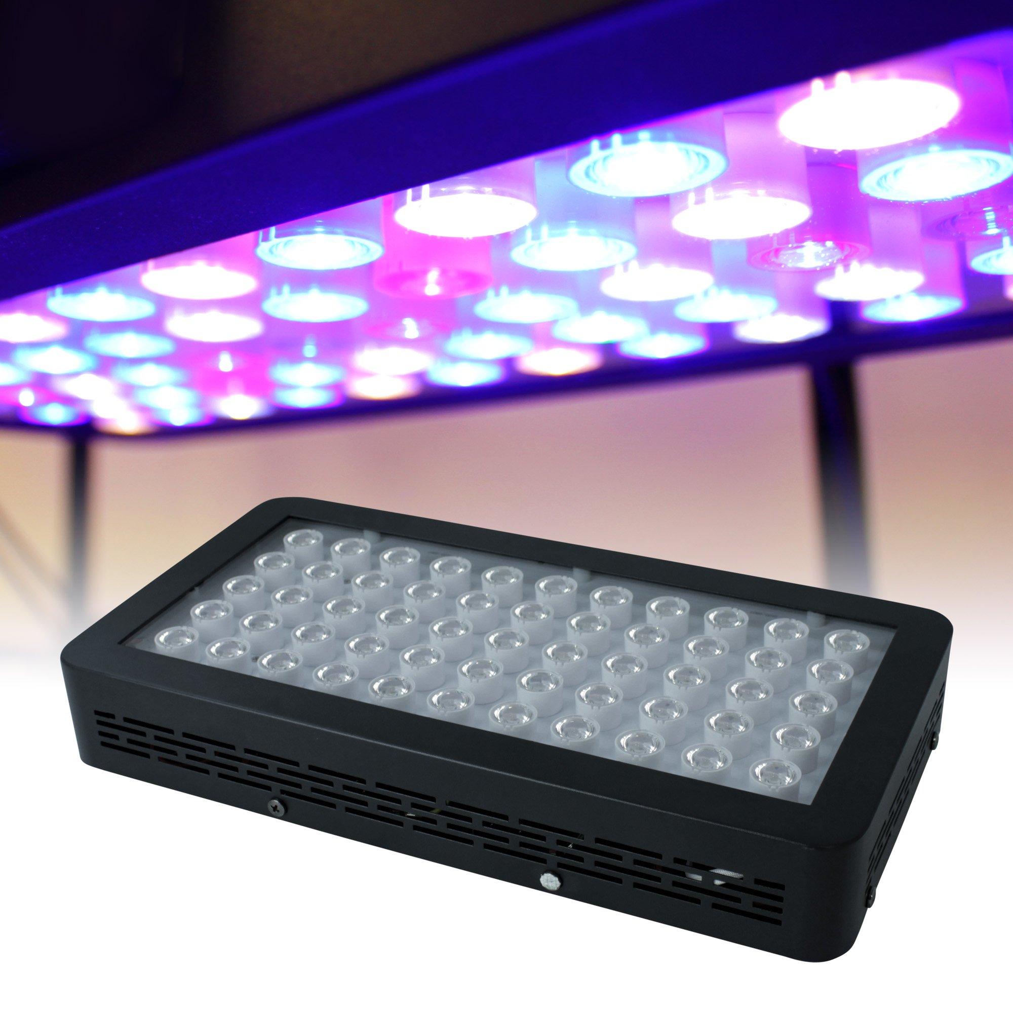 Hobbie Bug LED Aquarium Light Fixture for Saltwater/Coral Tanks – Euphotica Dimmable 16″, Programmable 16″ / 24″ / 32″