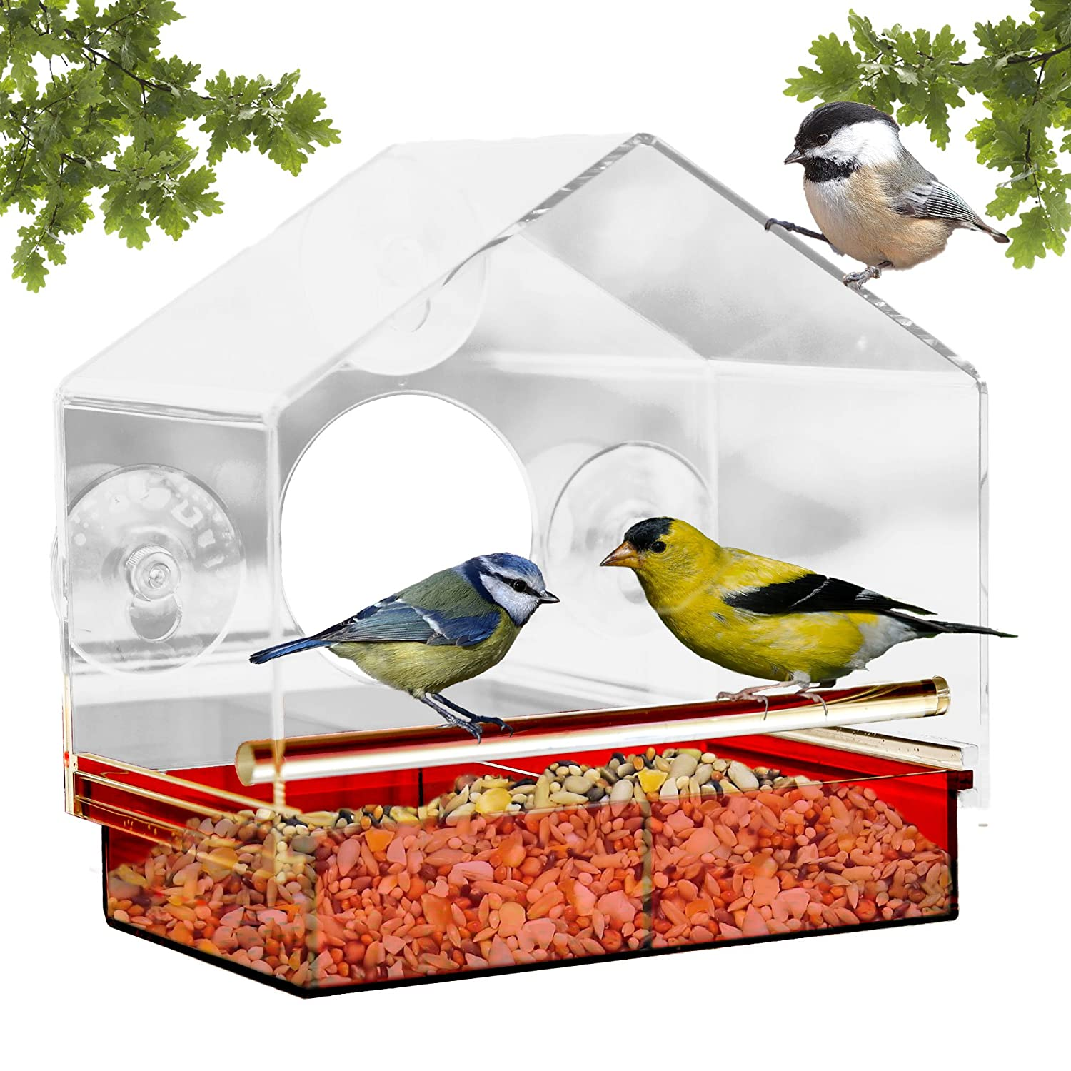 Window Bird Feeder With Strong Suction Cups Attracts Wild Birds, See Through  Design And Colored Removable Tray, 3 EXTRA Suction Cups, Squirrel Proof    100% ...