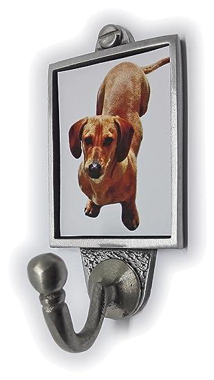 Stoneys Badges Chocolate Labrador Perro Perro Gancho De ...