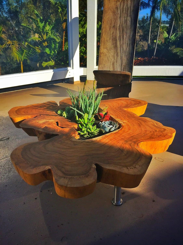 1 Teak Wood crosscut solid wood gardens etc. walkways great for furniture