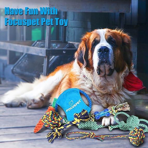 Focuspet Juguetes para Perros Juguetes de Cuerda de 8 Piezas para Perros, Dientes, Entrenamiento IQ para Perros pequeños y medianos: Amazon.es: Productos ...