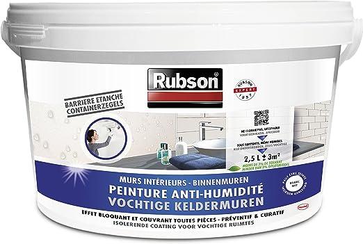 Rubson Peinture Anti Humidité Peinture Acrylique Anti Moisissures Préventif Ou Curatif Peinture Blanche étanche Idéale Pour Les Murs Intérieurs