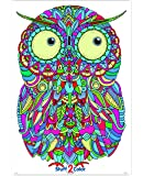 """Stuff2Color Baby Owl - Giant Coloring Poster - 32.5"""" X 22"""" (Great for Family Time, Adults, Kids, Classrooms, Care…"""