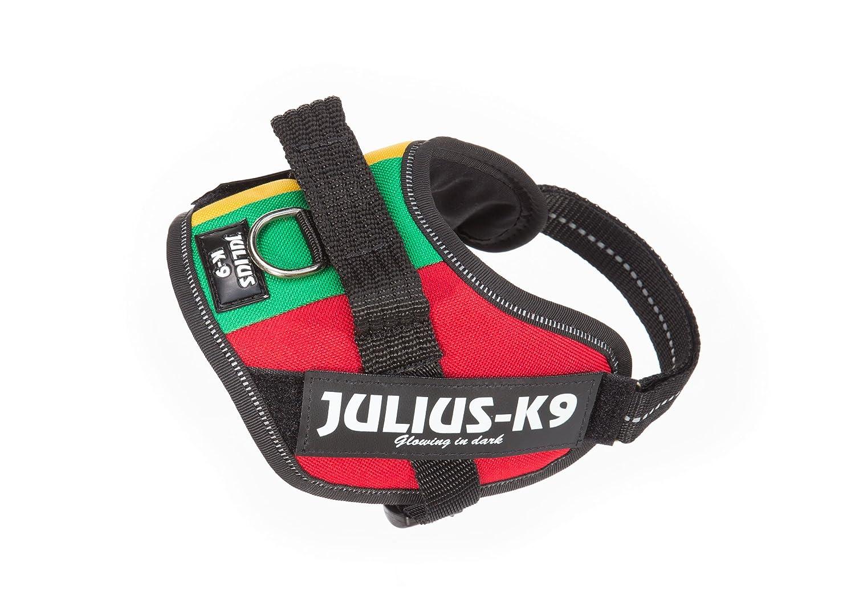 Julius-K9 IDC-Power Harness, Lithuanian Flag, Size  Mini-Mini 40-53 cm