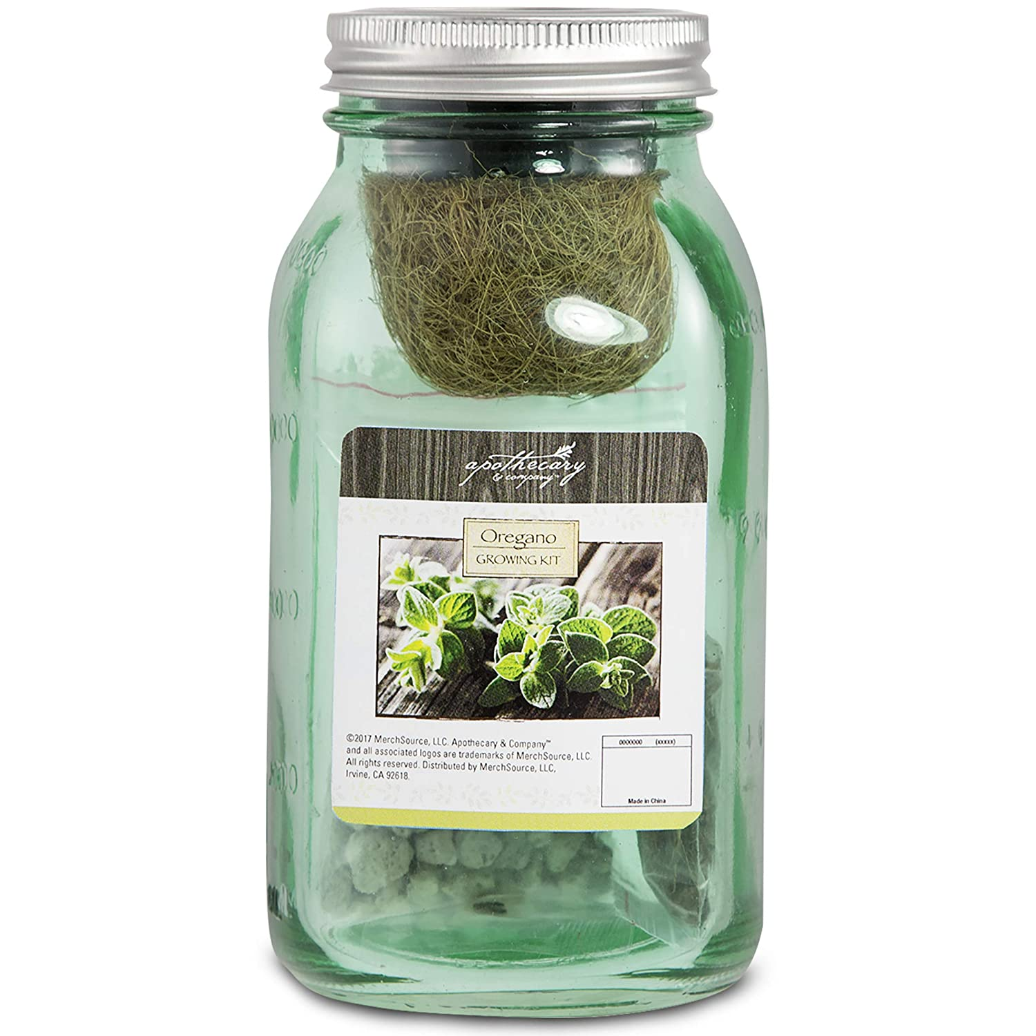 Apothecary Decorative Oregano Herb Growing Kit in Mason Jar