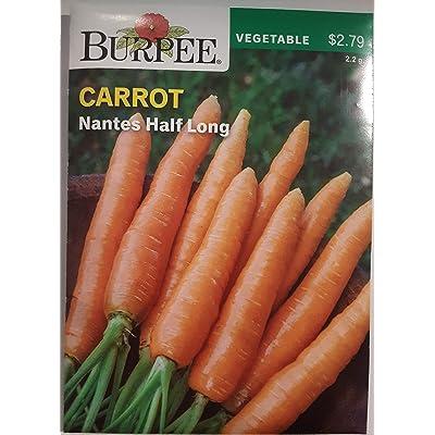 Burpee Carrot Nantes Half Long Seed : Garden & Outdoor