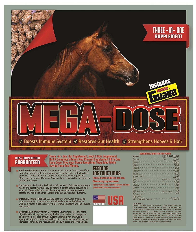 Horse Guard Mega Dose Equine Vitamin Mineral Hoof & Probiotic Supplement, 40 lb by Horse Guard (Image #7)