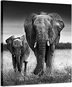 """Elephant Pictures Art Wall Decor: Photographic Arts The Love of The Elephant Mama and Baby Print on Canvas in Black and White (28"""" x 28"""")"""