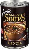 Amys Soup Lentil Gf Org