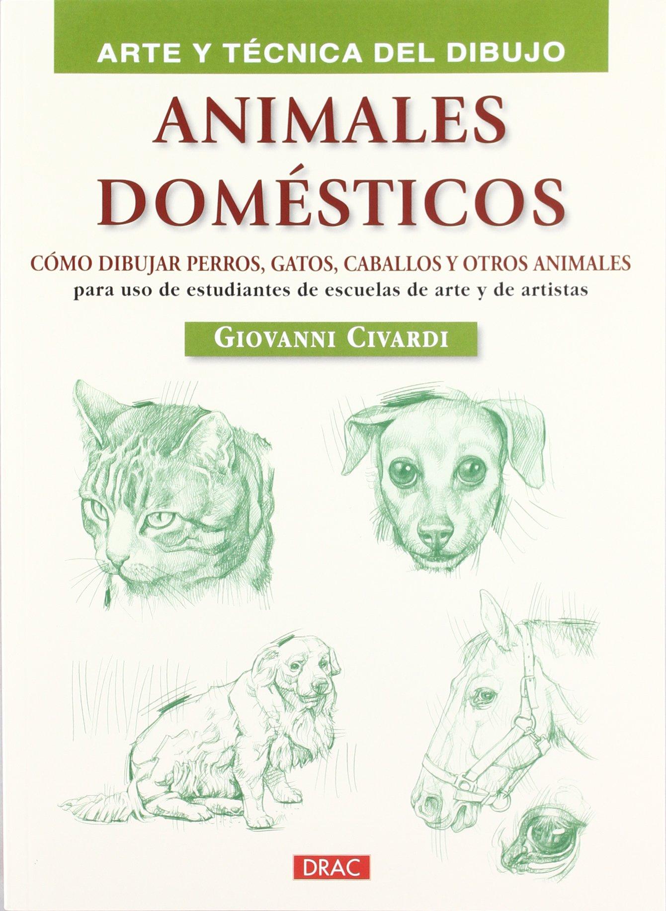ANIMALES DOMÉSTICOS: CÓMO DIBUJAR PERROS, GATOS, CABALLOS Y OTROS ANIMALES (Spanish) Paperback – February 1, 2012