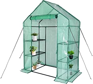"SV SCOOL VALUE Greenhouse,Outdoor Greenhouse,Portable Greenhouse with Anchors and Roll-up Zipper Door,Grow Plants Seedlings Herbs or Flowers(56""×30""×76"")"
