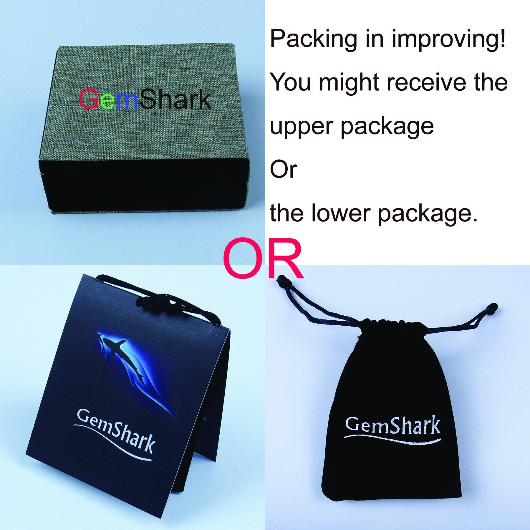 GemShark 15g Sterling Silver Necklace Pendant Great White Shark Tooth for Men Women by GemShark (Image #4)