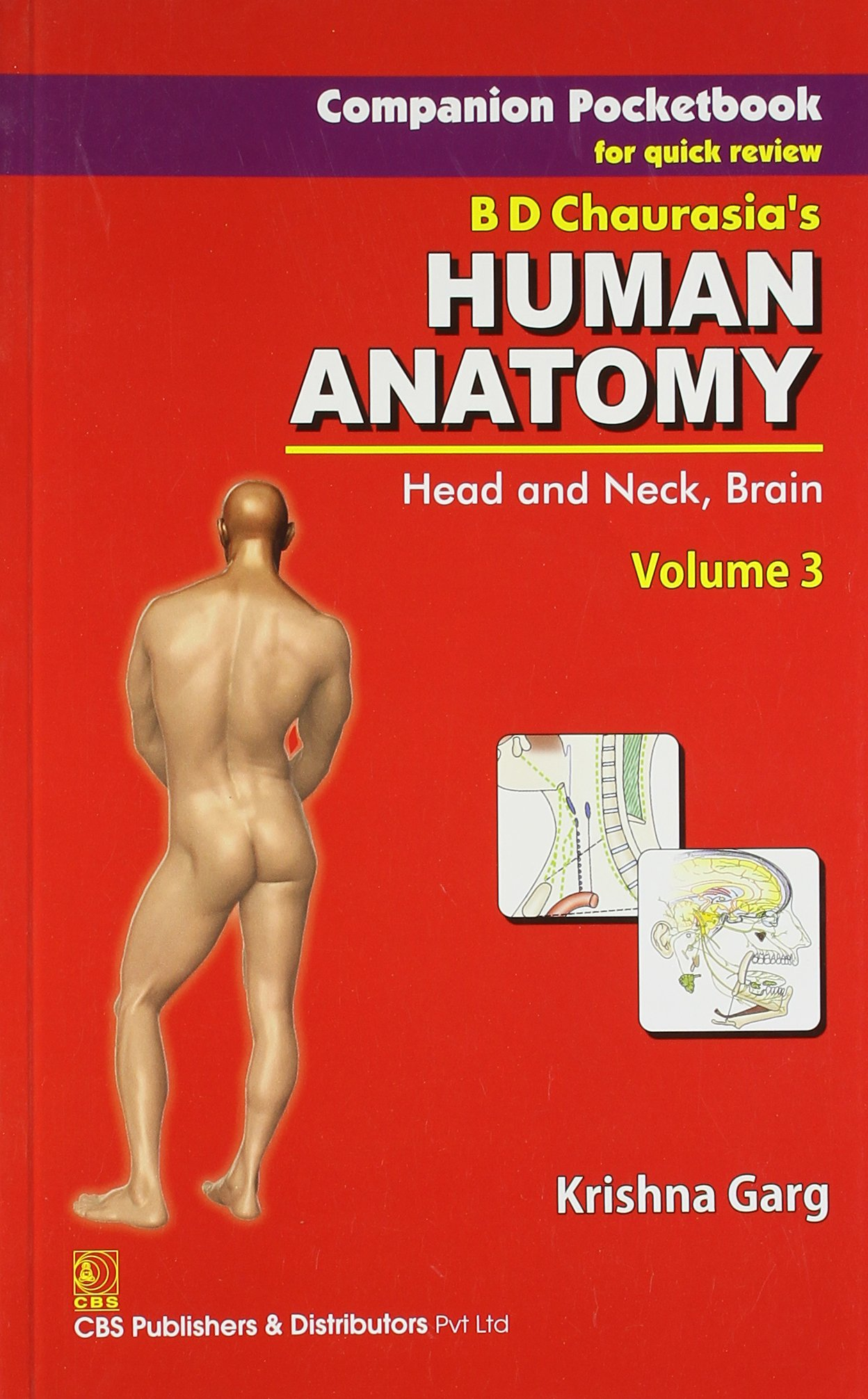 Companion Pocketbook For Quick Review Bd Chaurasias Human Anatomy