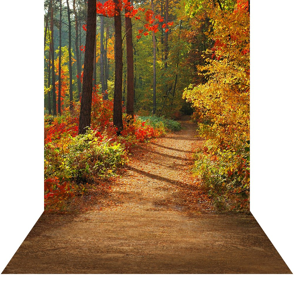 写真バックドロップwith床 – Fall Walk – 10 x 20 ft。 – 高品質シームレスなファブリック   B00P1U9CR6