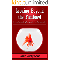 Looking Beyond the Fishbowl: A New Comforting Perspective on Reincarnation (Between Heaven and Earth Book 2)