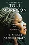 The Source of Self-Regard: Selected Essays, Speeches, and Meditations (Vintage International)