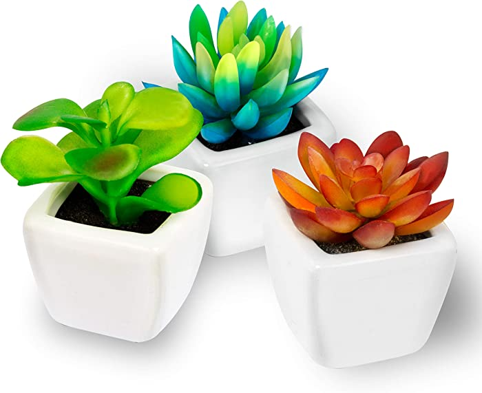 The Best Large Artificial Plants For Office Office