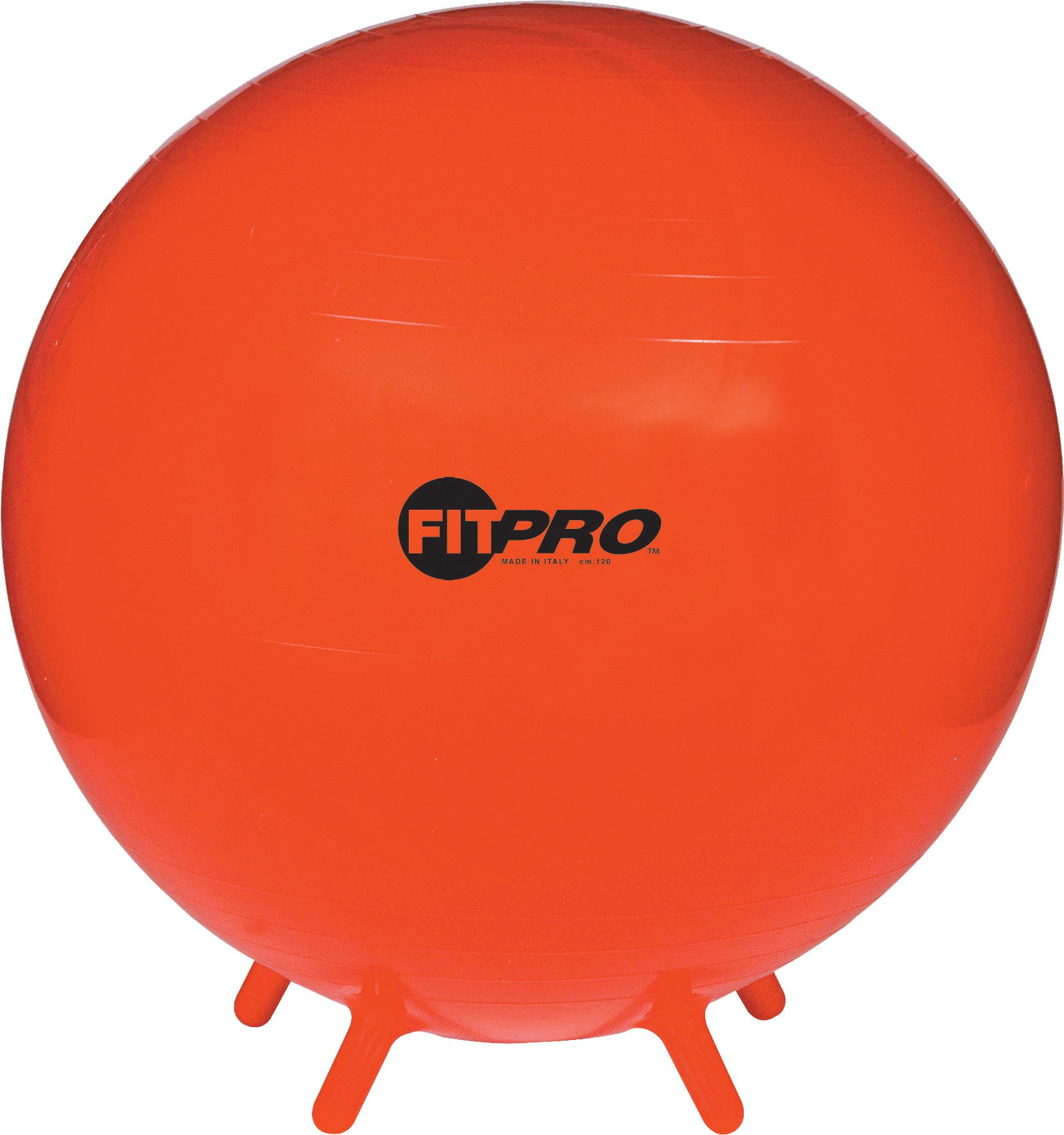 Champion Sports 75CM FIT PRO Ball with Stability Legs
