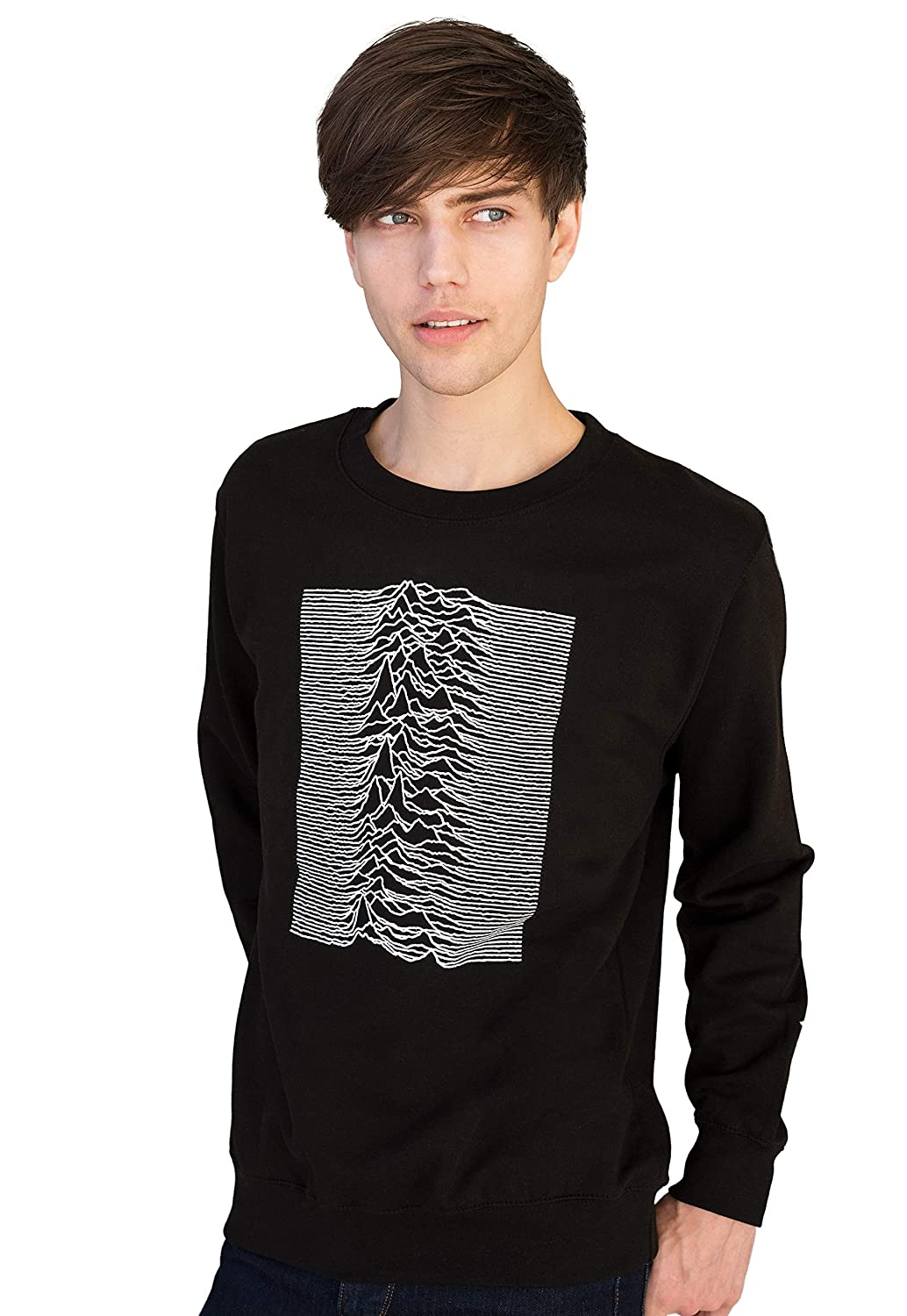 Pulsar Used by Joy Division for the Unknown Pleasures - Sweatshirt / Jumper