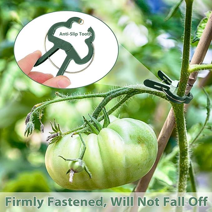 150 pcs Jardin Clips /à Plantes Clips de Fixation de Support Vigne Tomate L/égumes Fleurs Ficelle Jardinage Agriculture Fixation Clips Blanc