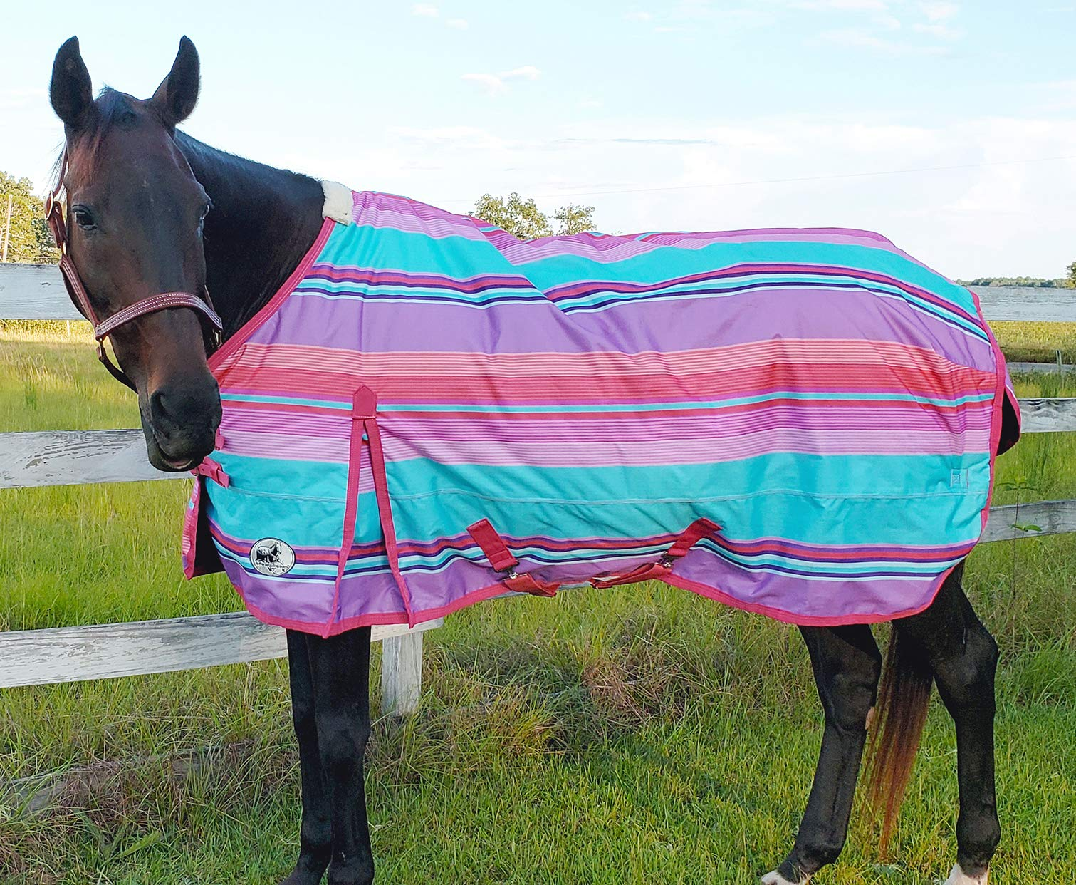 Jeffers 600D Sunset Serape Expression Horse Turnout Blanket, 240g by Jeffers