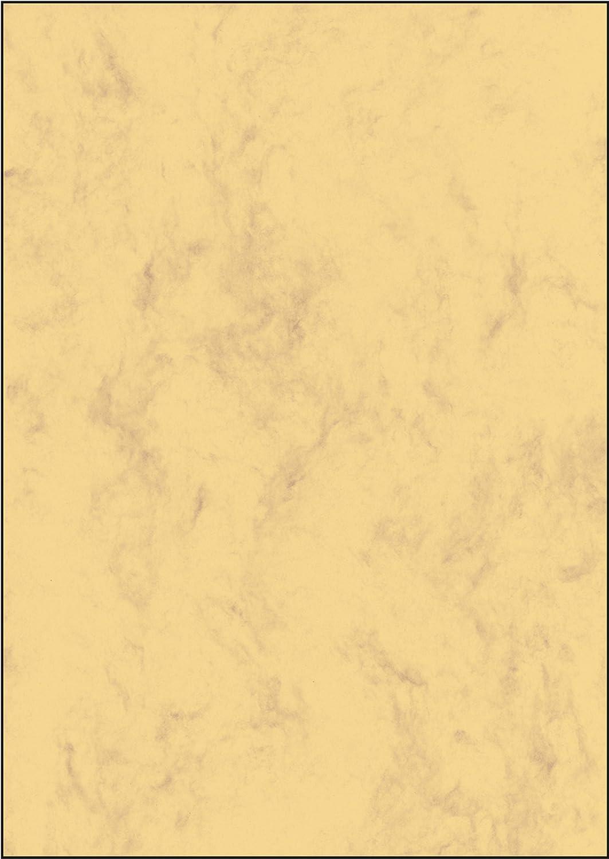 Youarebb Shampoo Bar Aceite Esencial de Plantas Algas biol/ógicas Jab/ón Bar Esencia de la Planta Champ/ú y acondicionador 100/% Natural Hecho a Mano