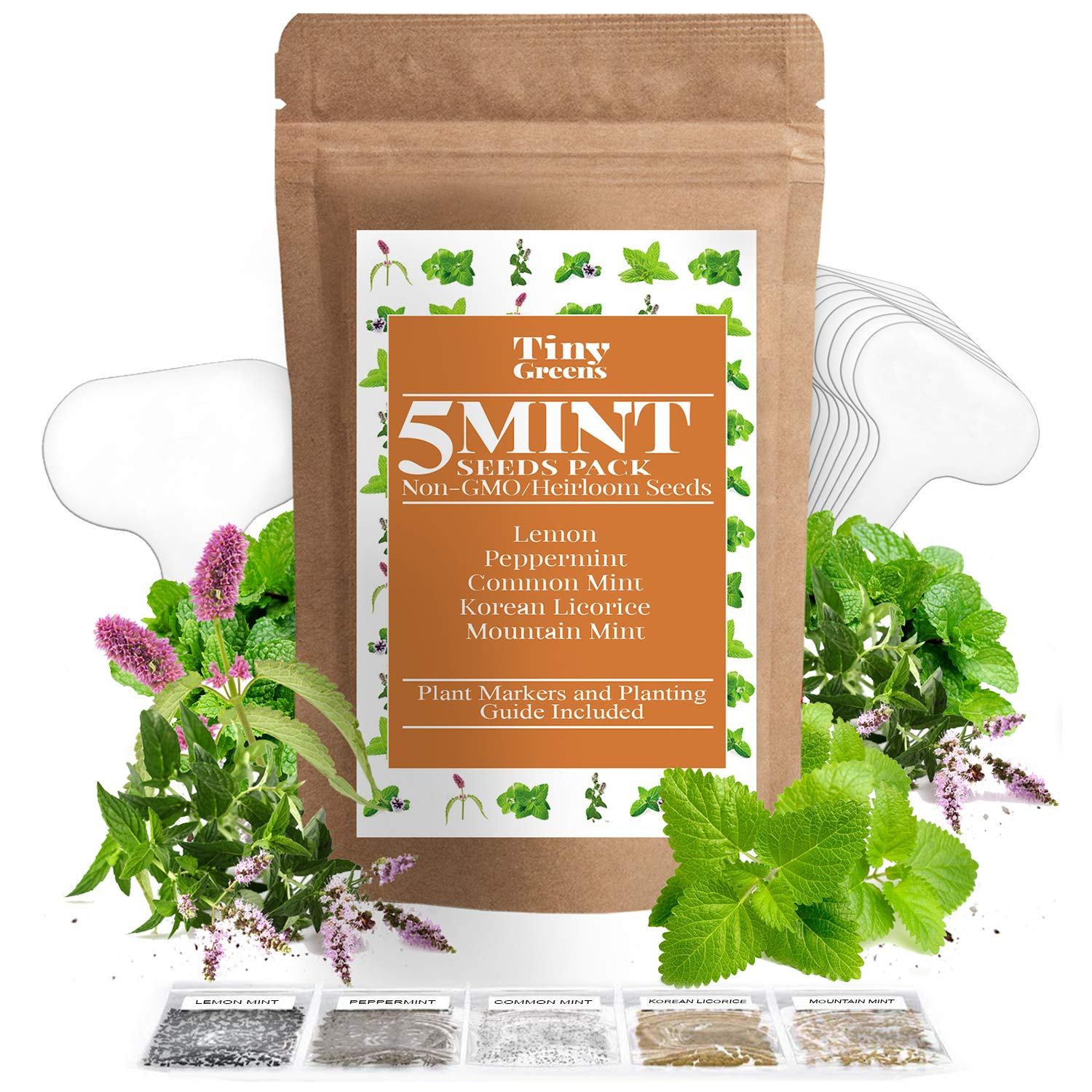 5 Mint Seeds Garden Pack - Peppermint, Lemon Mint, Mountain Mint, Korean Licorice, and Regular Mint - Perfect for Indoor or Outdoor Herb Gardens - Make Your Own Herbal Mint Tea | Heirloom & Non-GMO