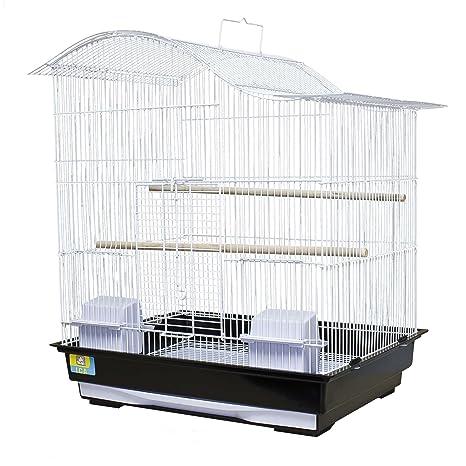 ICA KKATY2 Kit Jaula para Loros: Amazon.es: Productos para mascotas